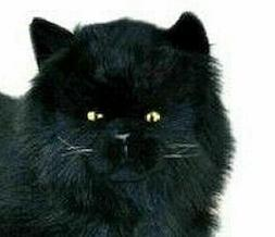 "Black Cat lying soft plush stuffed toy Onyx 14""/36cm by Bocc"