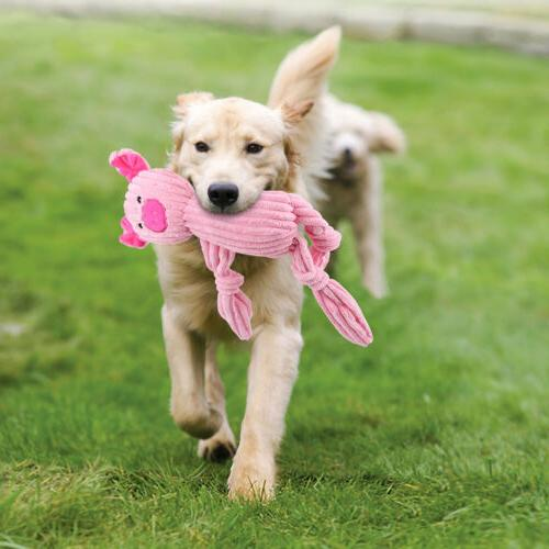 3 Toys Durable Plush Toy Pets w/