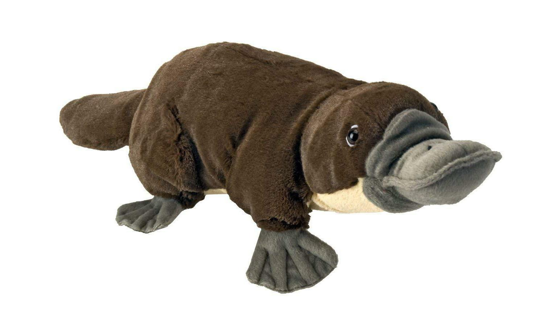 "Wild Republic 12"" Platypus Plush Cuddlekins Stuffed Animal P"