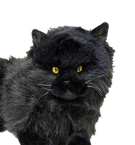 Black lying soft plush