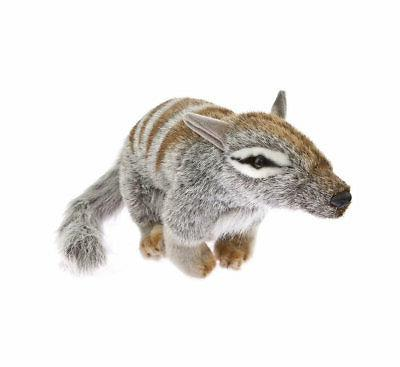 numbat plush toy sherbert new medium 11inches