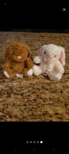 "Hobby Lobby Plush Bunnies Brown And White 6"""