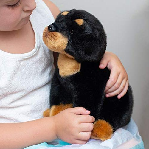 Nat and Sitting Small Rottweiler Dog Children's