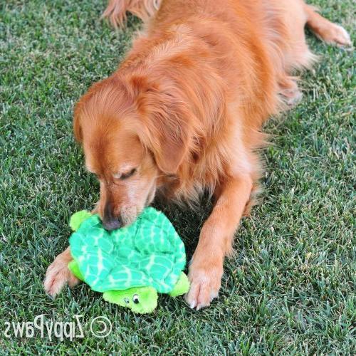 ZippyPaws Plush Dog Toy - Slowpoke