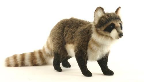 standing raccoon plush